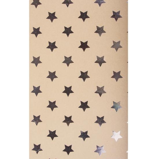 Hobby karton met zilveren sterren