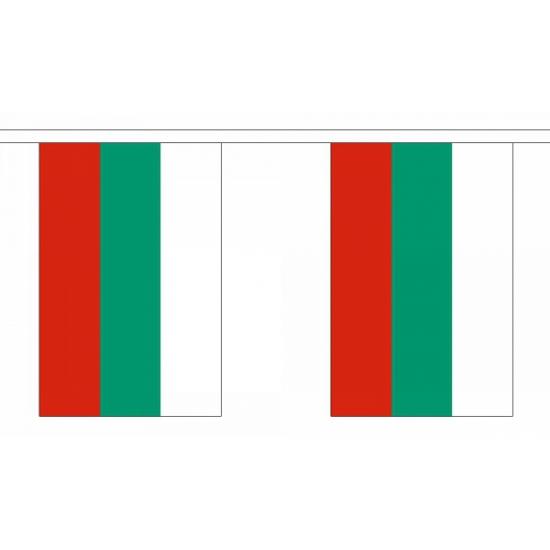 Luxe Bulgarije vlaggenlijn 9 meter