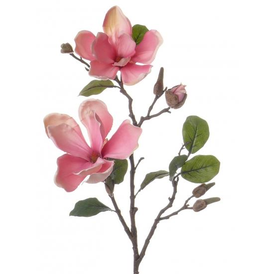 Magnolia tak roze 72 cm