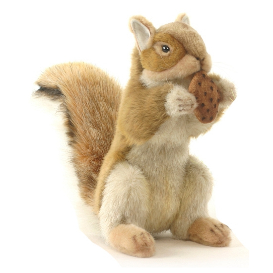 Pluche eekhoorn 22 cm