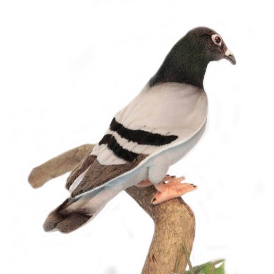 Pluche knuffel duif 29 cm