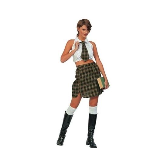 School meisje kostuum. dames schoolmeisjes kostuum dat bestaat uit de blouse, het rokje en de stropdas. ...