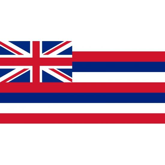 Vlag Hawaii 90 x 150 cm