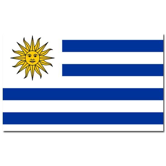 Vlag Uruguay 90 x 150 cm