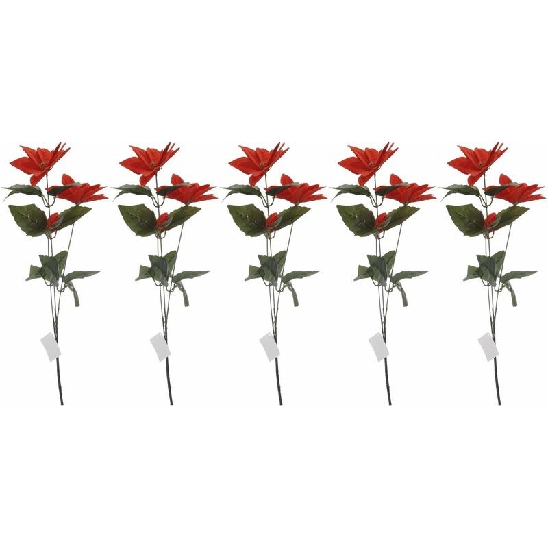 5x Rode Kerstster bloem 66 cm