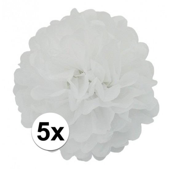 5x stuks Witte decoratie pompom 25 cm