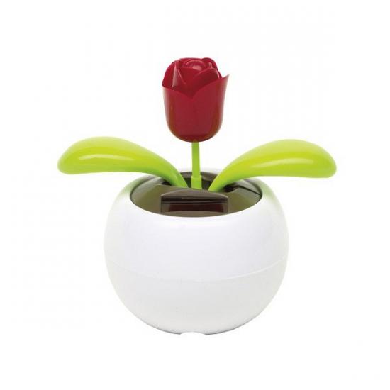 Bewegende roos op zonne energie