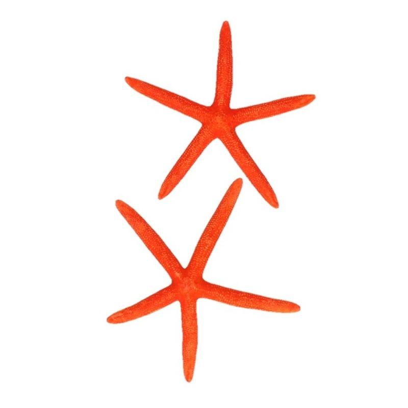 Decoratie oranje zeesterren 2 stuks