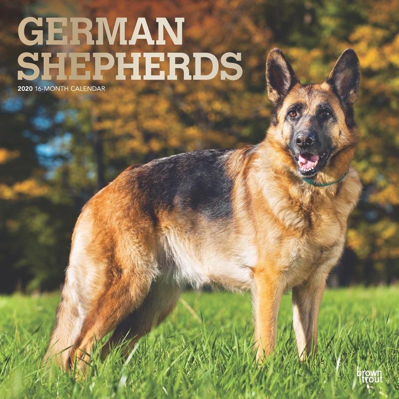Dieren kalender 2020 Duitse Herdershonden