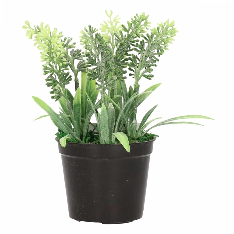 Groene Lavendula/lavendel kunstplant 16 cm in zwarte pot
