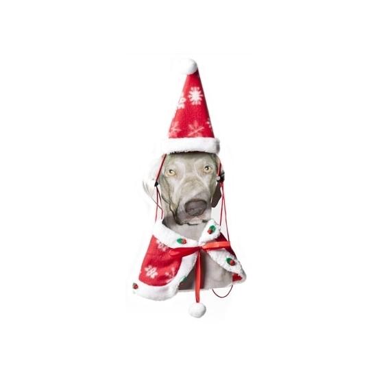 Kerst cape en kerstmuts voor de hond