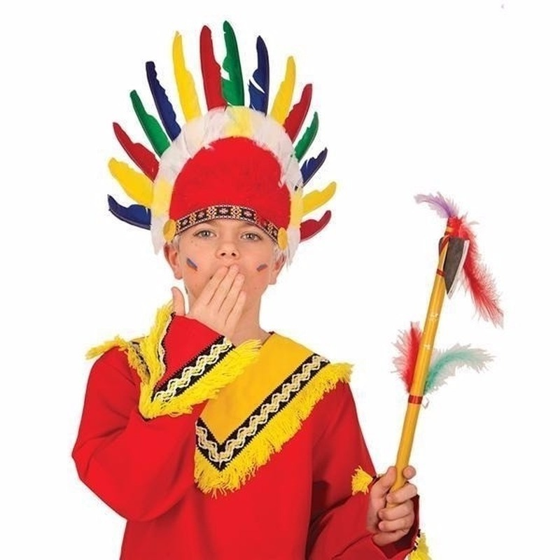 Kinder Indianen verkleed hoofdtooi met veren