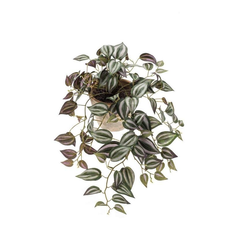 Kunst hangplant Tradescantia in oude terracotta pot 16 cm