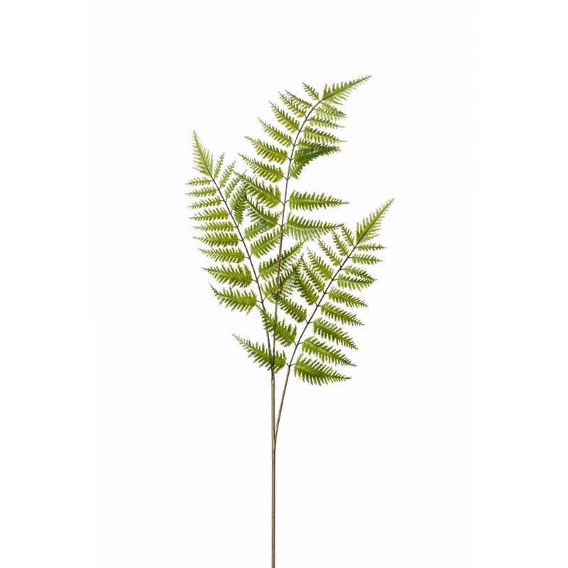 Kunstplant Boomvaren tak 85 cm