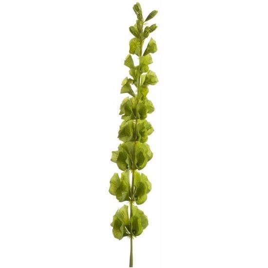 Kunstplant Molucella tak 80 cm groen