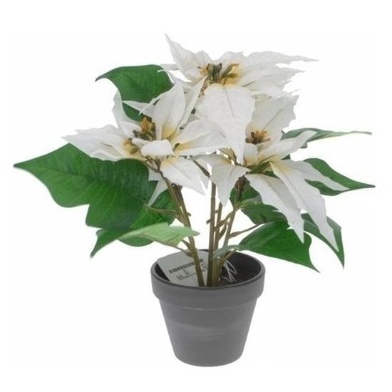 Kunstplant witte Kerstster in pot 30 cm