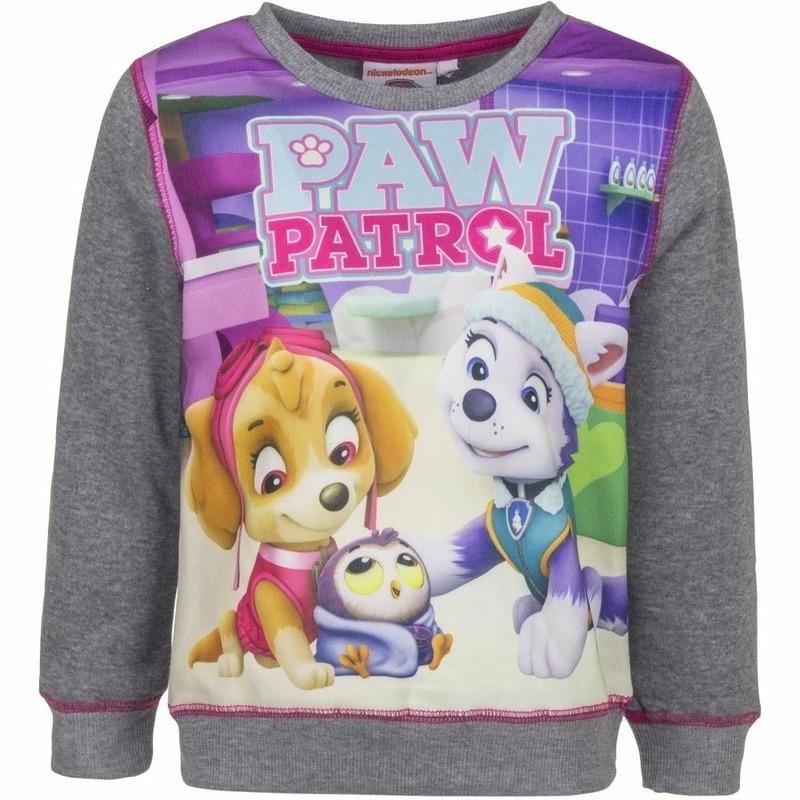 Paw Patrol sweater grijs