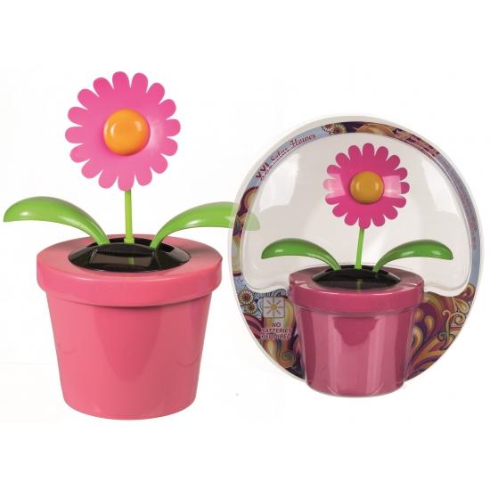 Roze bloempot met bewegende bloem