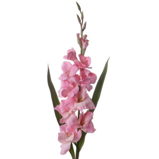 Roze kunstbloemen gladiool 102 cm