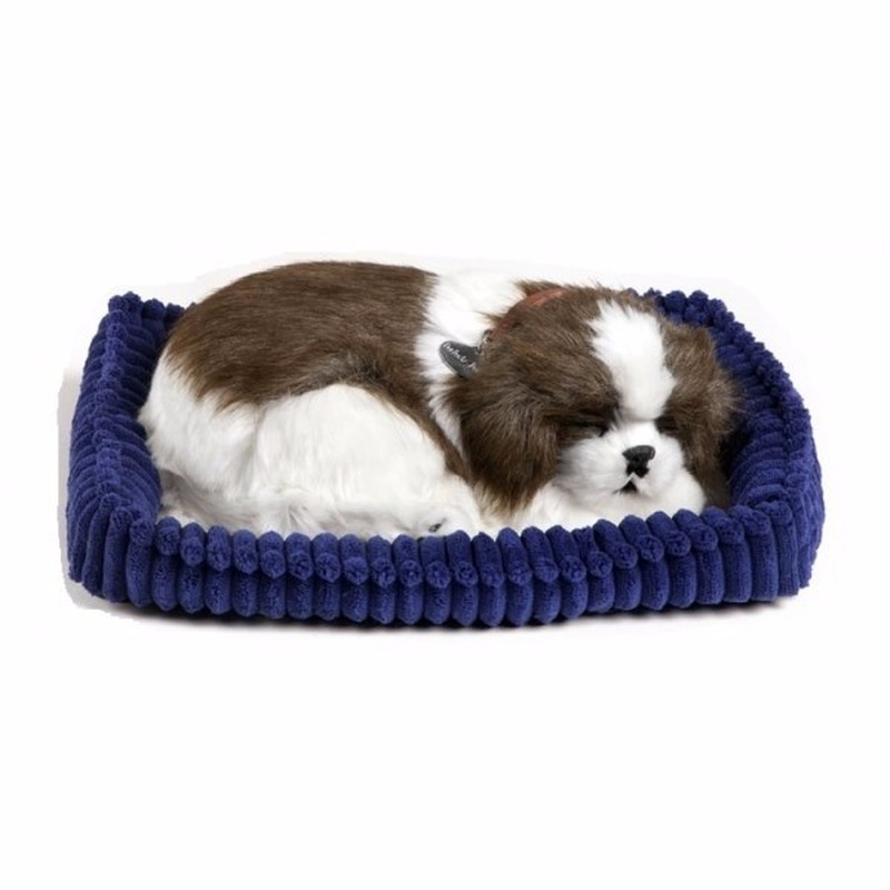 Slapende Shih Tzu honden knuffel