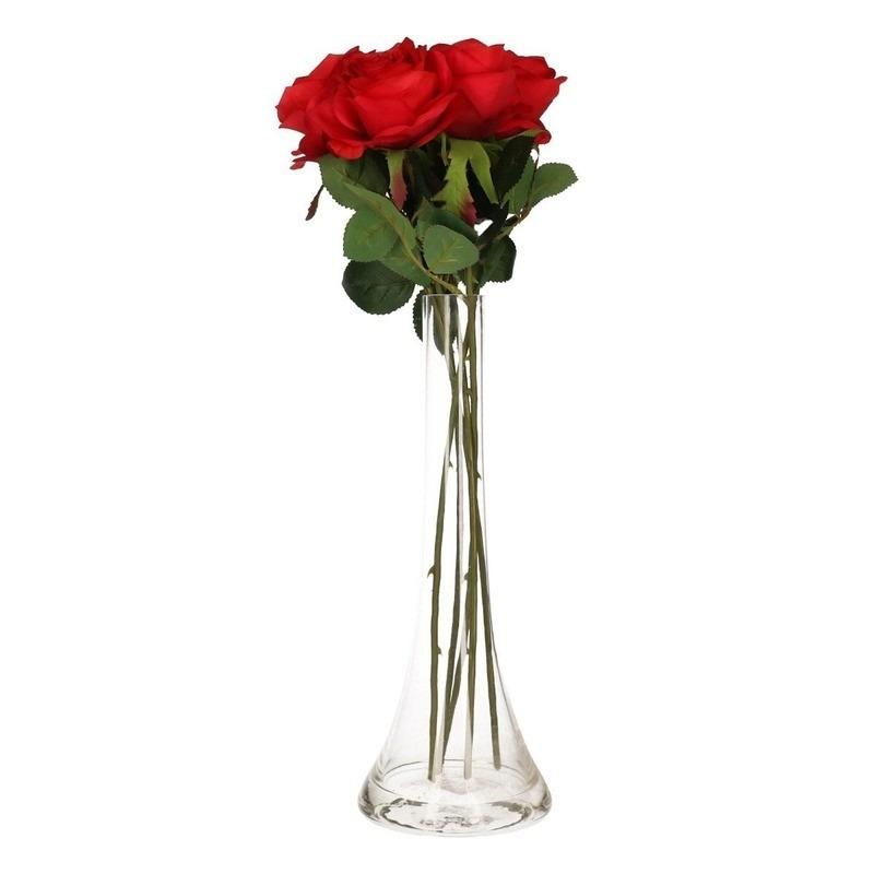 Valentijnscadeau 5 rode rozen in vaas