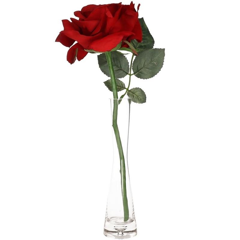 Valentijnscadeau rode roos 31 cm in smalle vaas