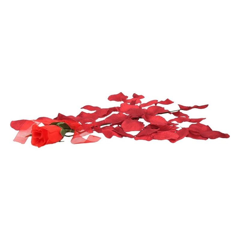 Valentijnscadeau voordelige rode roos met bordeaux rozenblaadjes