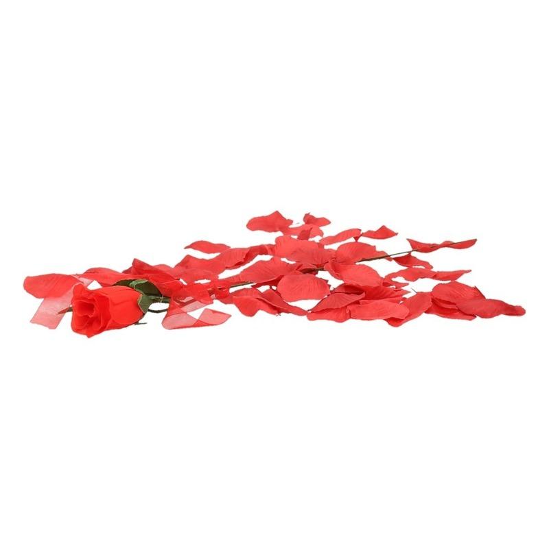 Valentijnscadeau voordelige rode roos met rozenblaadjes
