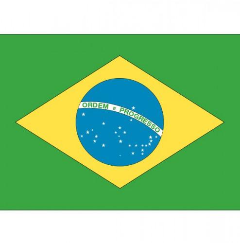 10x Vlag Brazilie stickers 10 cm