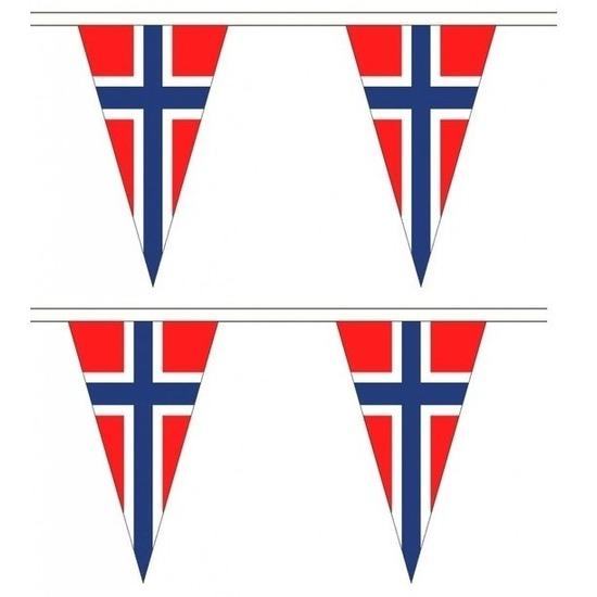 2x Noorwegen landen punt vlaggetjes 5 meter